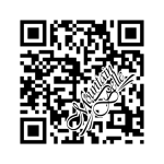 QR bar code for MountainBelle.com
