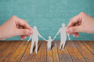 Papercut family
