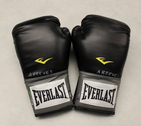 6d2198f41 Everlast Pro Style Training Gloves Review